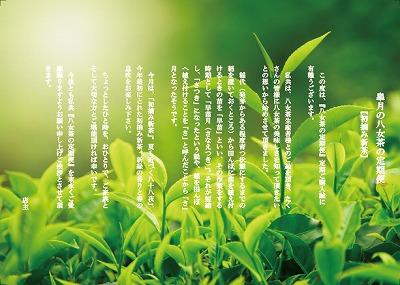 5月*初摘み新茶