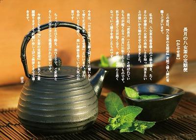 9月*かぶせ茶
